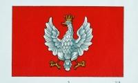 Flaga Naczelnika