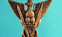 Odznaka Samodzielnej Brygady Strzelców Karpackich